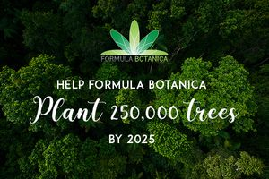 The Formula Botanica Forest
