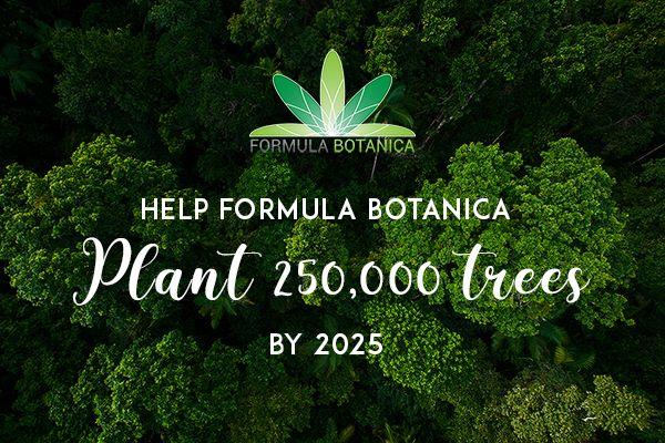 The Formula Botanica Forest