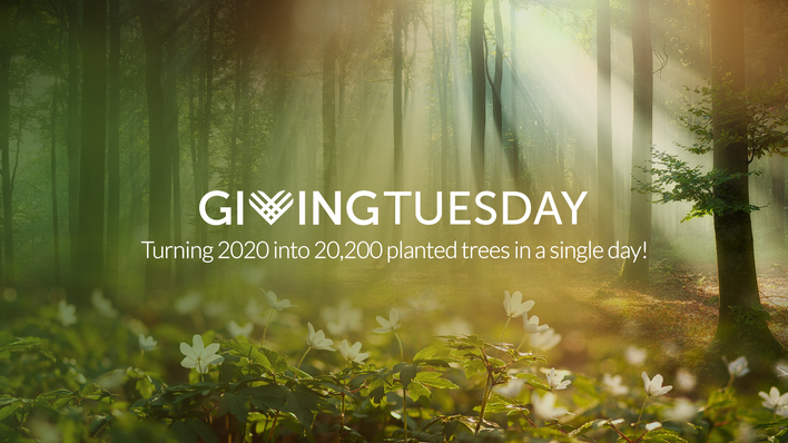 Giving Tuesday ~ 20200 Trees for 2020