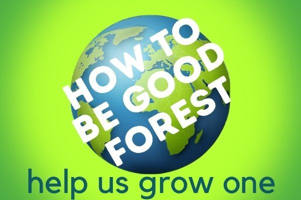 How To Be Good Forest