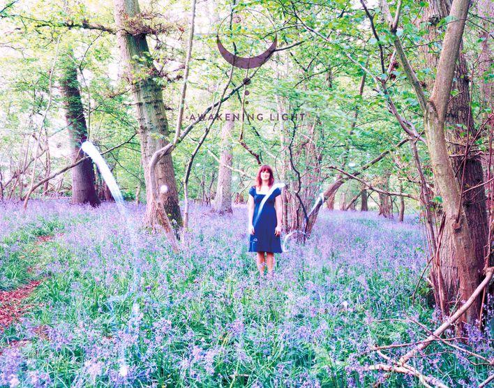 Awakening Light's Forest