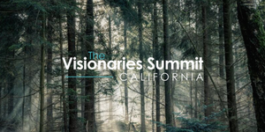 The Visionaries Summit Forest
