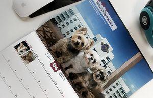 2021 Pet Photo Contest Calendar