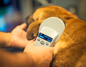 *RESERVED* Microchip Scanner