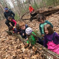 Woodland Adventures (Ages 3-5)