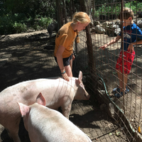 Farm Learning Workshop Series (Ages 7-12)