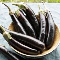 Eggplant 'Little Finger'