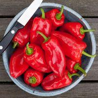 Pepper HMS Red Picnic Pepper