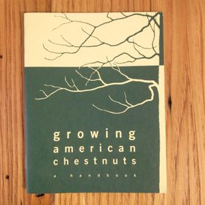 Growing American Chestnuts