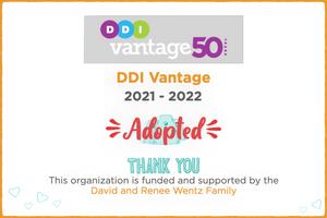 DDI Vantage 2021-22