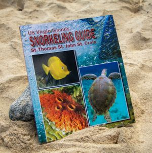 US Virgin Islands Snorkeling Guide. St. Thomas, St. John, and St. Croix