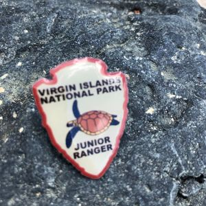 VI National Park Junior Ranger Pin