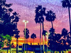 Magic Moments in a Parking Lot