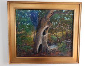 Arroyo Hondo Ancient Oak