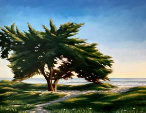 The Cypress and the Sea