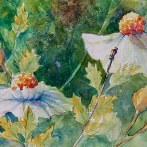 Watercolor Florals: Translucent and Vibrant: May 16