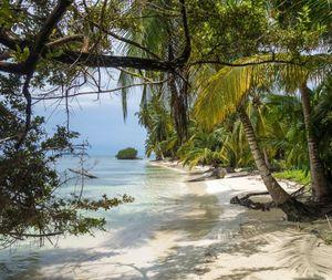Week 6: Aug 3 - 6 Performing Arts - Islands