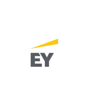 EY Connect Day