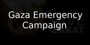 Gaza Emergency  Campaign