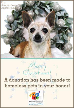 Merry Christmas  - Dog Card