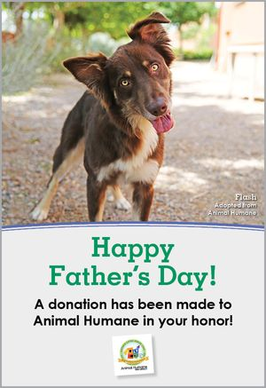 Father's Day - Dog Card