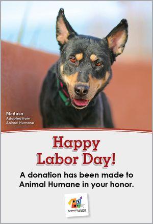 Labor Day - Dog Card