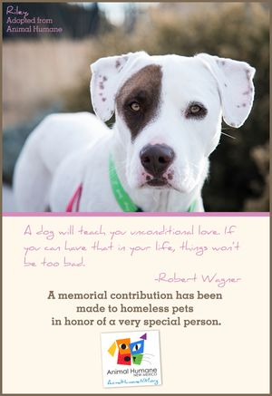 In Memory of Person - Dog Card