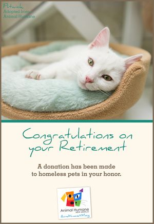 Retirement - Cat Card