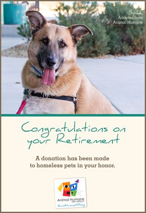 Retirement - Dog Card