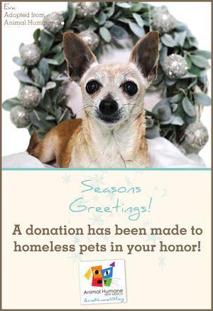 Season's Greetings  - Dog Card