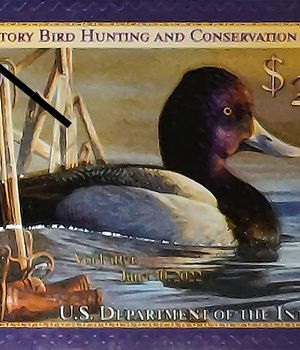 2021-22 Federal Duck Stamp