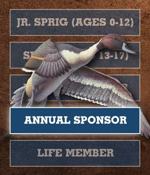 Gift Membership - Annual Sponsor