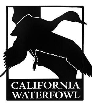 CWA Logo Metal Art
