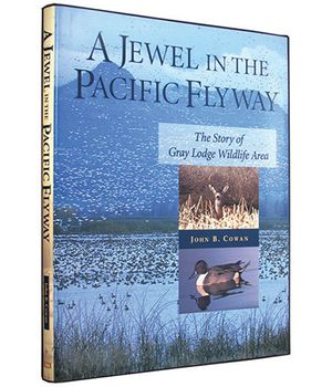 A Jewel in the Pacific Flyway