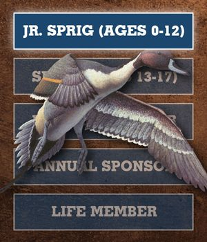 Gift Membership - Junior Sprig