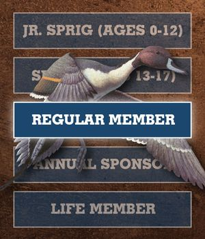 Gift Membership - Regular Member