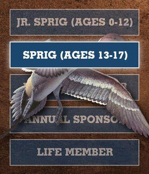 Gift Membership - Sprig