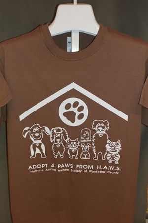 Adopt 4 Paws from HAWS - Brown